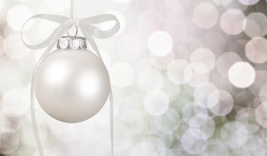 Cena de Navidad 20º aniversario AEPA